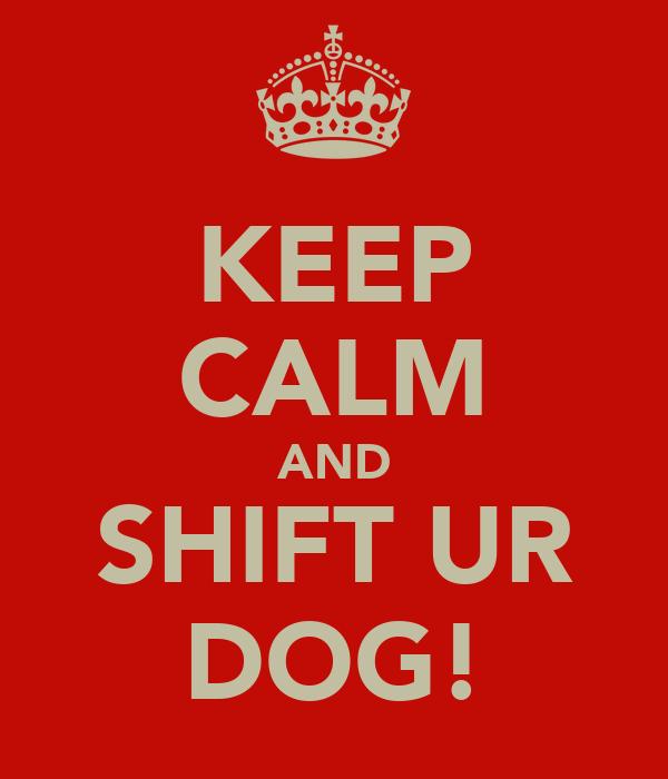 KEEP CALM AND SHIFT UR DOG!