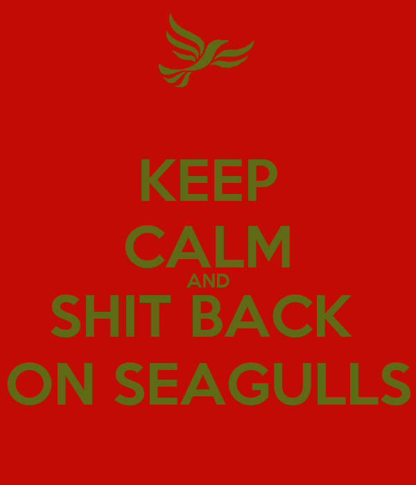KEEP CALM AND SHIT BACK  ON SEAGULLS