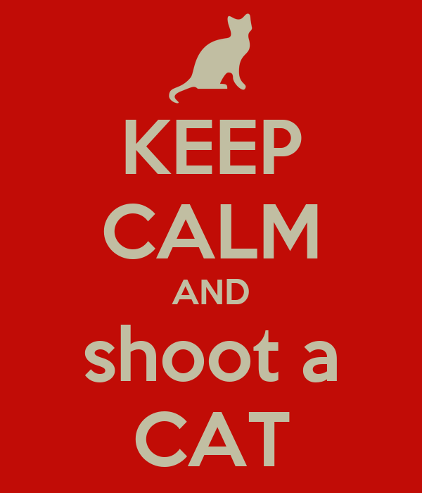KEEP CALM AND shoot a CAT
