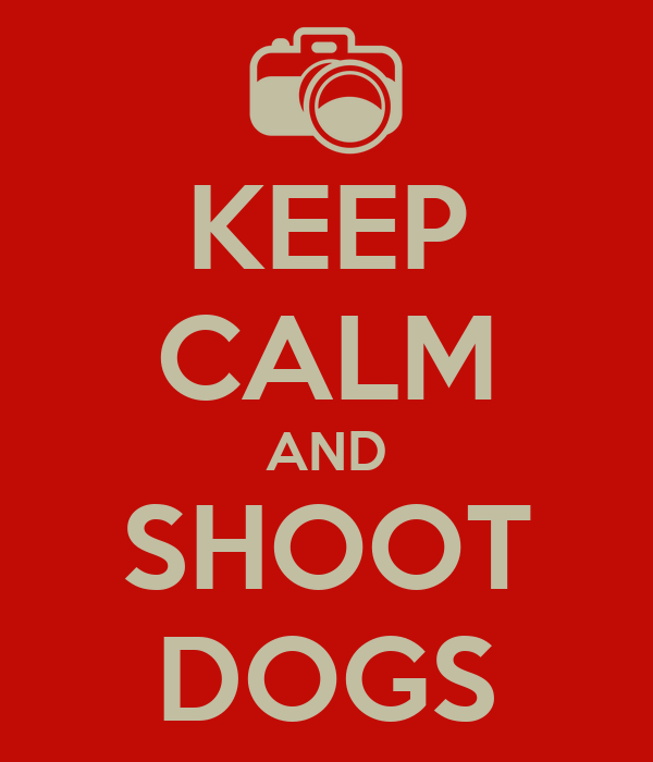 KEEP CALM AND SHOOT DOGS
