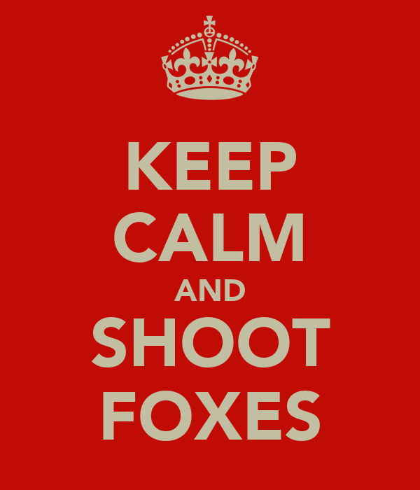 KEEP CALM AND SHOOT FOXES