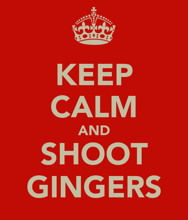 KEEP CALM AND SHOOT GINGERS