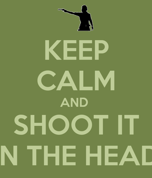 KEEP CALM AND  SHOOT IT IN THE HEAD