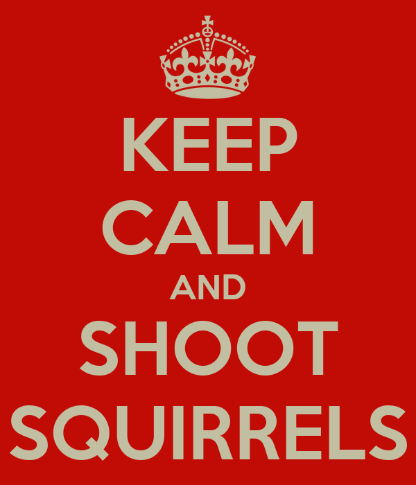 KEEP CALM AND SHOOT SQUIRRELS