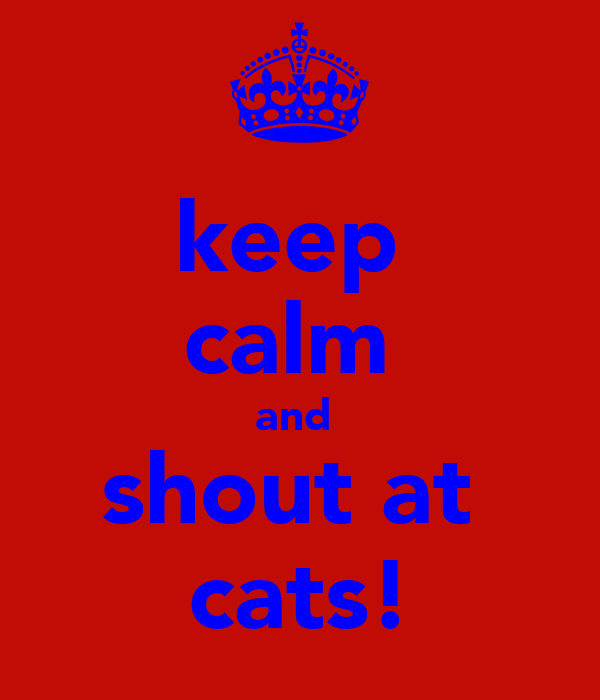keep  calm  and  shout at  cats!