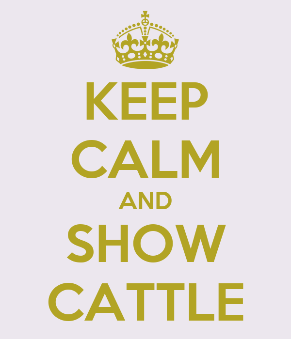 KEEP CALM AND SHOW CATTLE