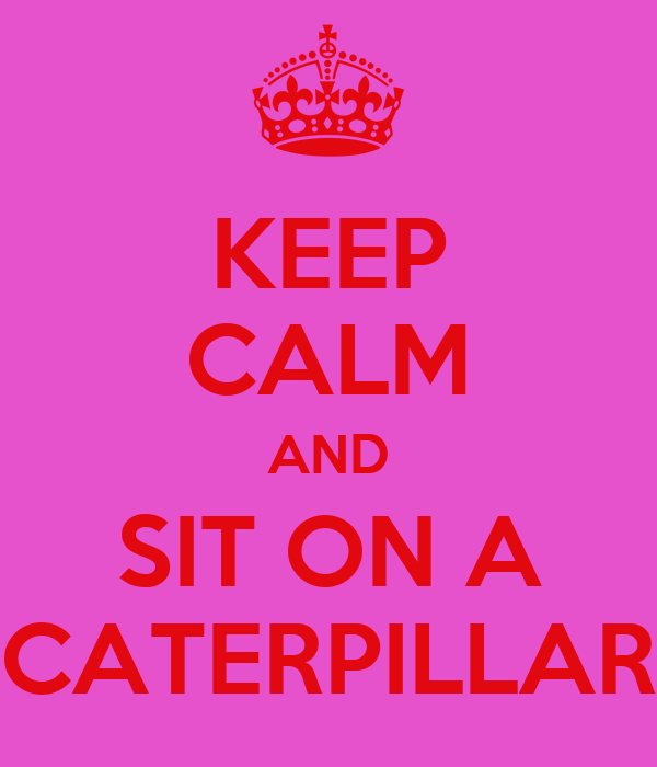 KEEP CALM AND SIT ON A CATERPILLAR