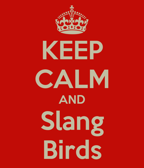 KEEP CALM AND Slang Birds
