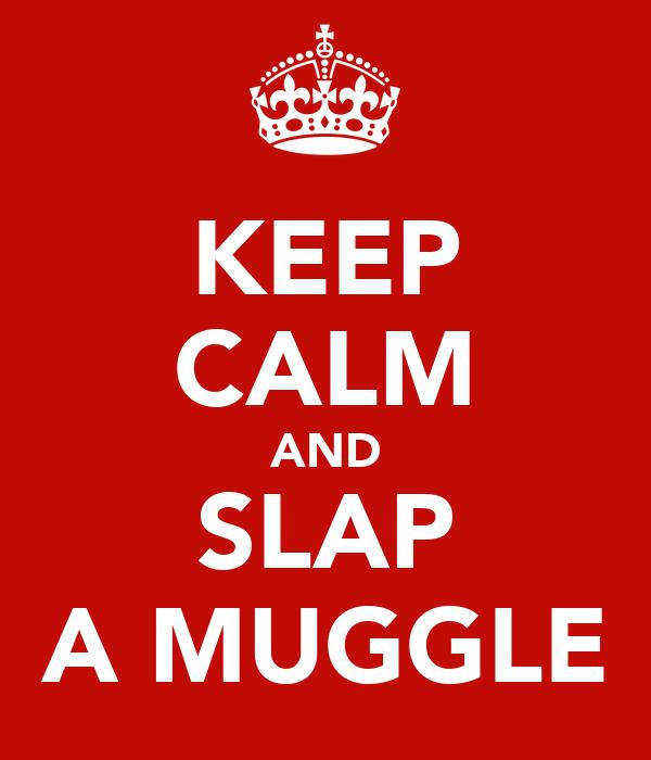 KEEP CALM AND SLAP A MUGGLE