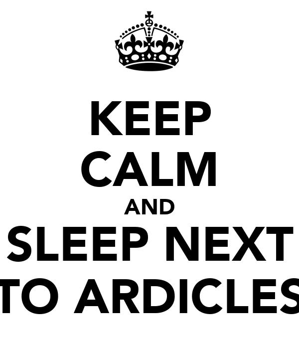 KEEP CALM AND SLEEP NEXT TO ARDICLES