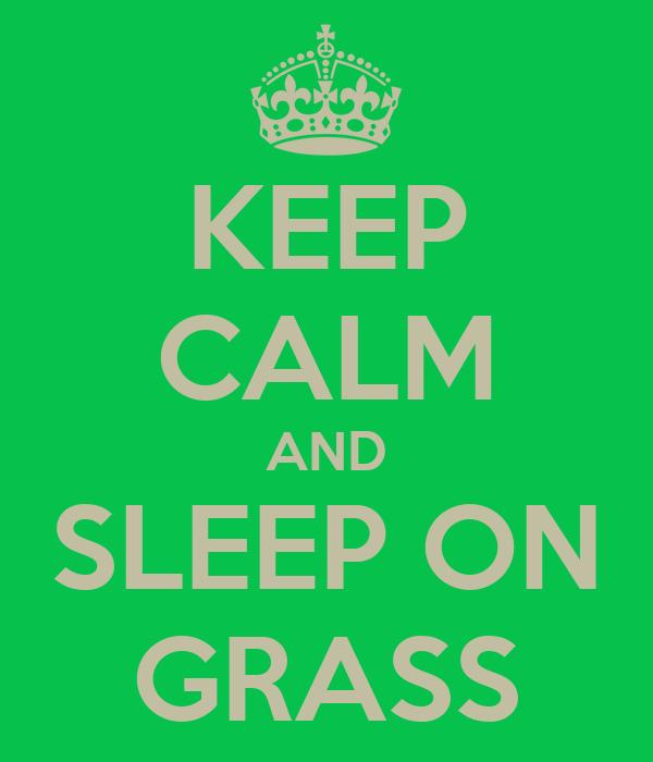 KEEP CALM AND SLEEP ON GRASS