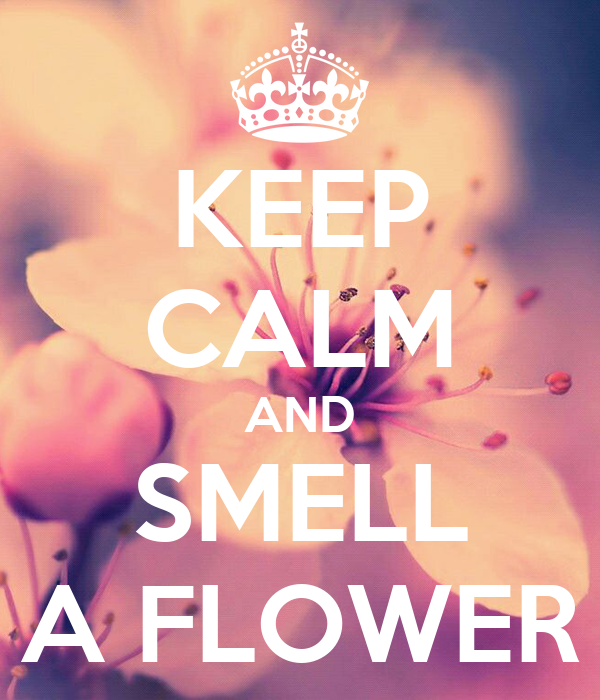 KEEP CALM AND SMELL A FLOWER