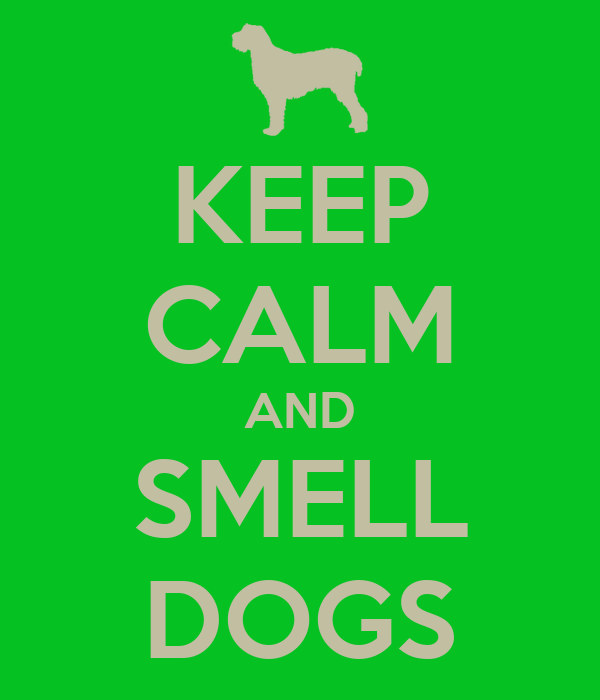 KEEP CALM AND SMELL DOGS