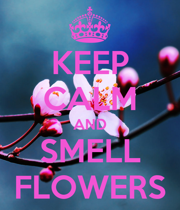 KEEP CALM AND SMELL FLOWERS