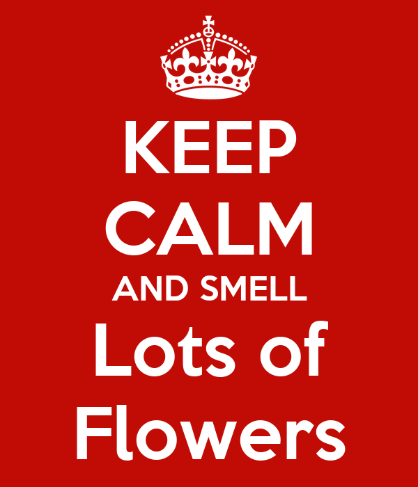 KEEP CALM AND SMELL Lots of Flowers