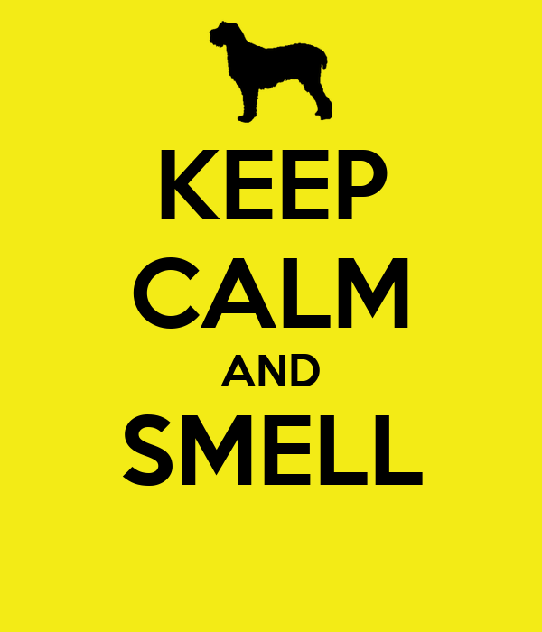 KEEP CALM AND SMELL