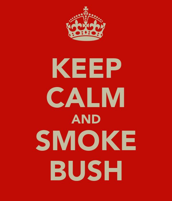 KEEP CALM AND SMOKE BUSH