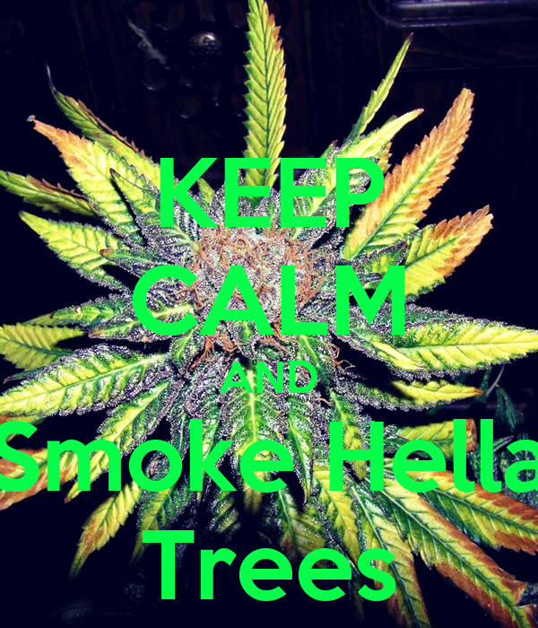 KEEP CALM AND Smoke Hella Trees