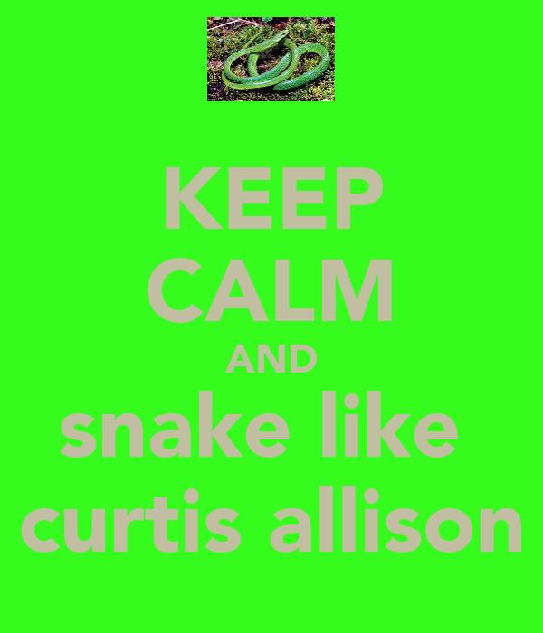 KEEP CALM AND snake like  curtis allison