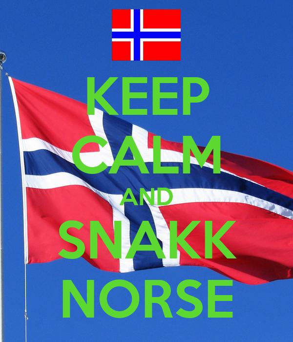 KEEP CALM AND SNAKK NORSE