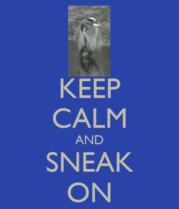 KEEP CALM AND SNEAK ON