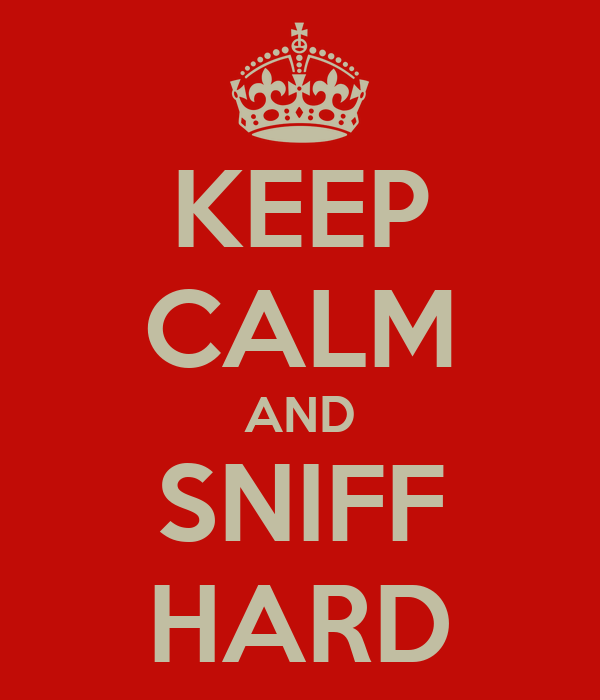 KEEP CALM AND SNIFF HARD