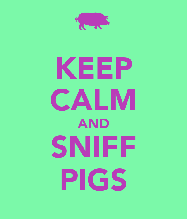 KEEP CALM AND SNIFF PIGS