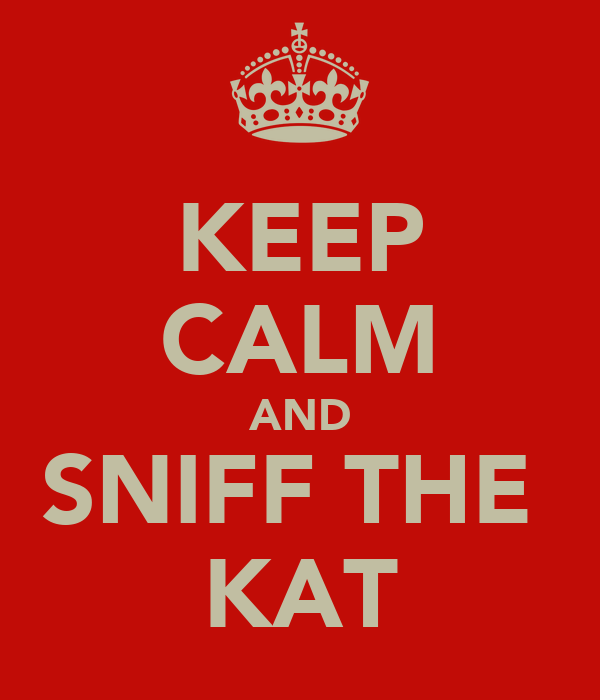 KEEP CALM AND SNIFF THE  KAT