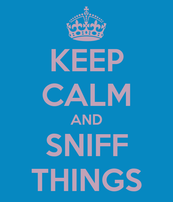 KEEP CALM AND SNIFF THINGS