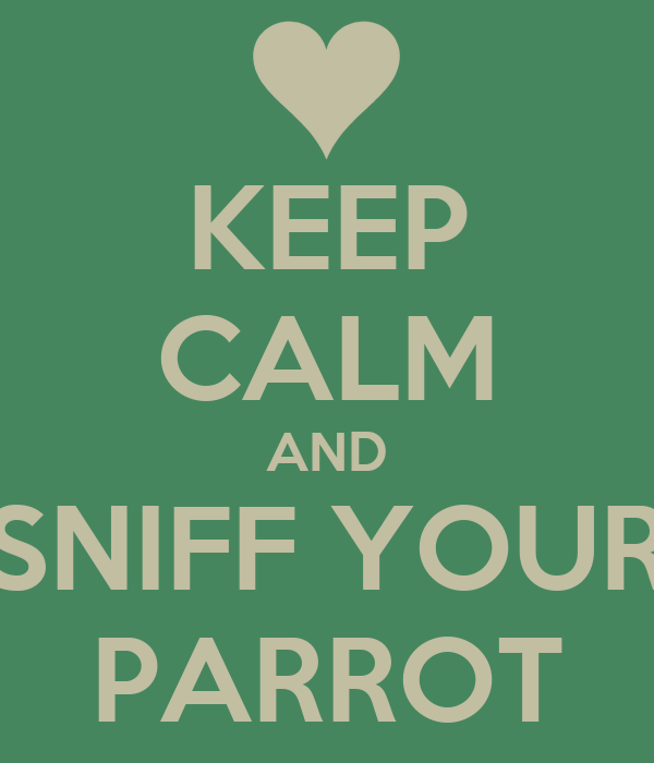 KEEP CALM AND SNIFF YOUR PARROT