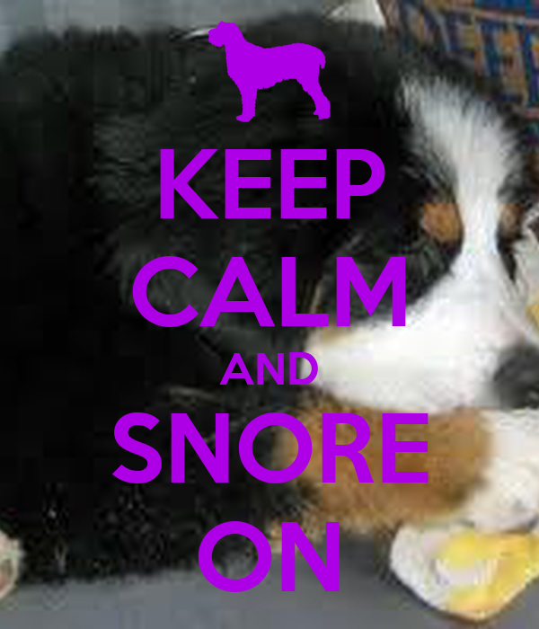 KEEP CALM AND SNORE ON