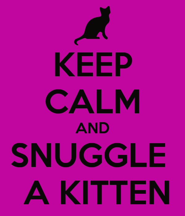 KEEP CALM AND SNUGGLE   A KITTEN