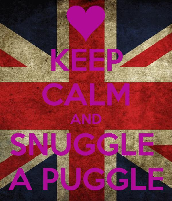 KEEP CALM AND SNUGGLE  A PUGGLE