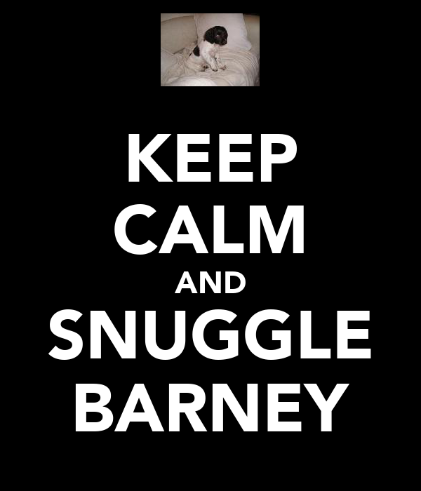 KEEP CALM AND SNUGGLE BARNEY