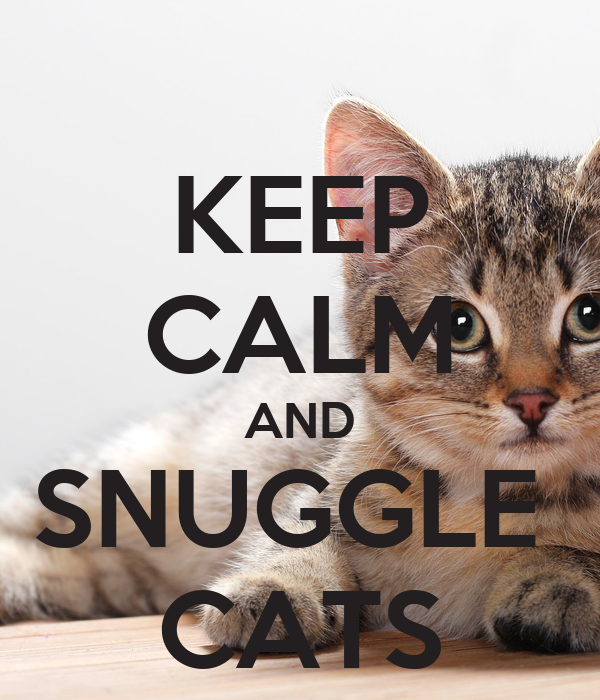 KEEP CALM AND SNUGGLE  CATS