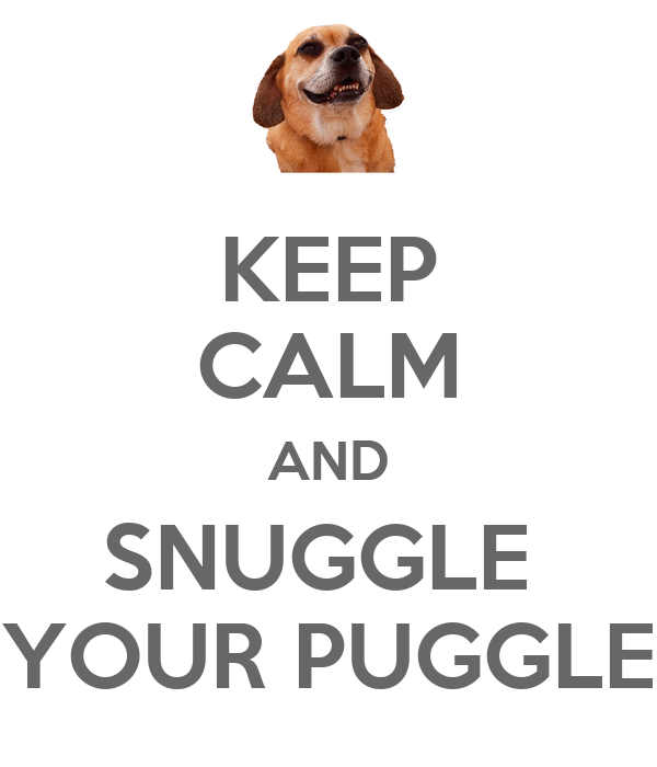 KEEP CALM AND SNUGGLE  YOUR PUGGLE