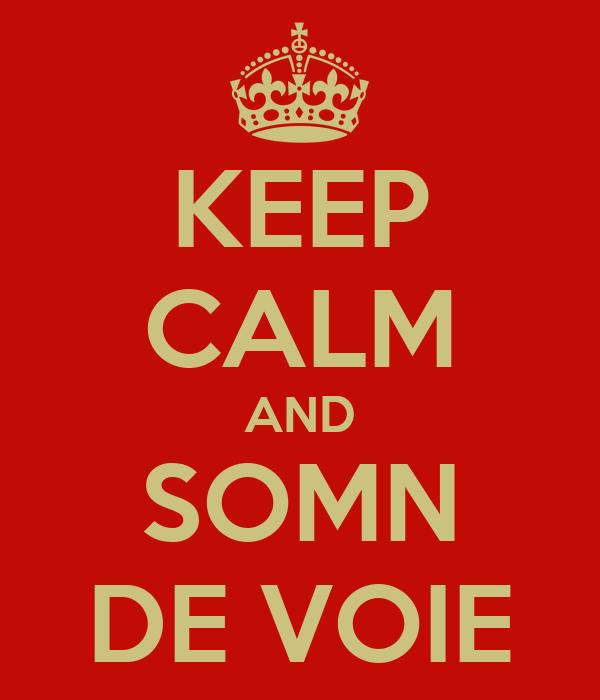 KEEP CALM AND SOMN DE VOIE