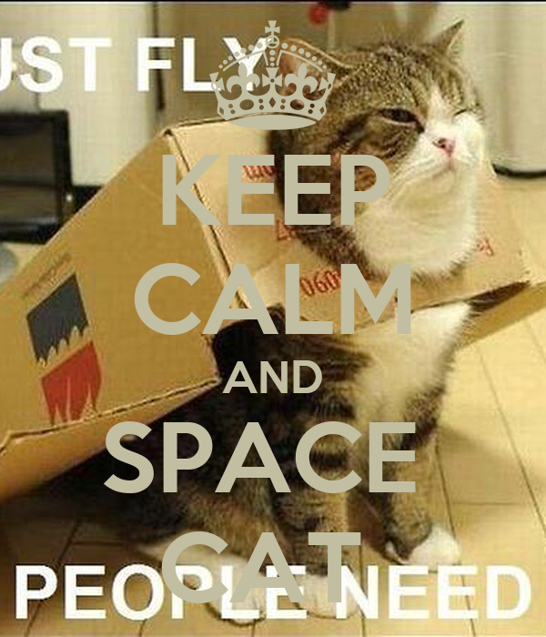KEEP CALM AND SPACE  CAT