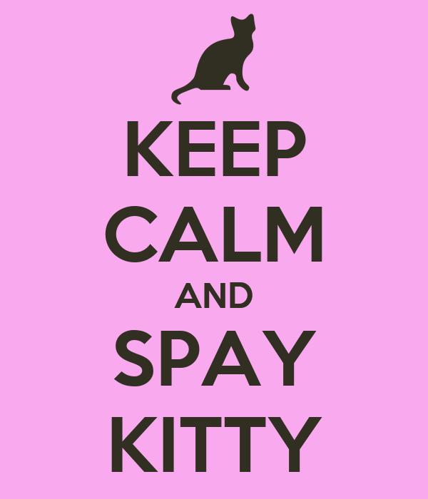 KEEP CALM AND SPAY KITTY