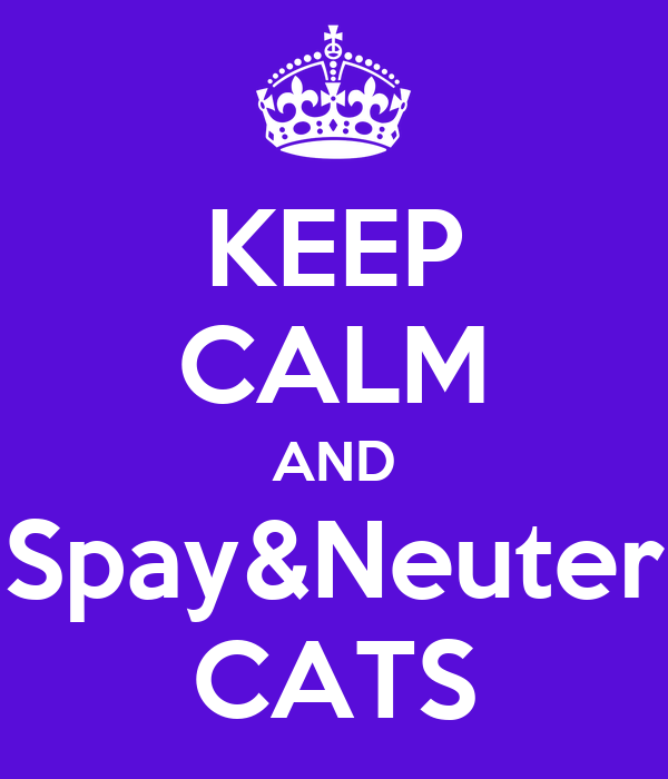 KEEP CALM AND Spay&Neuter CATS