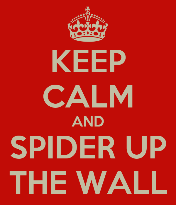 KEEP CALM AND SPIDER UP THE WALL