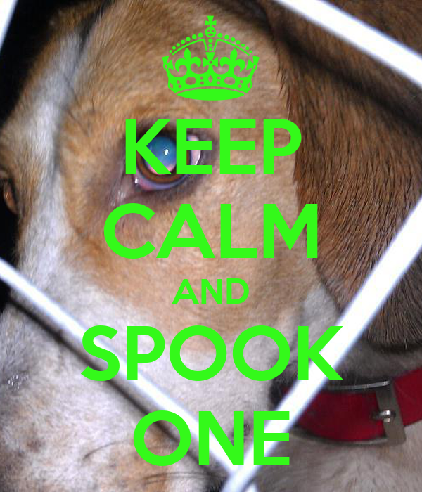 KEEP CALM AND SPOOK ONE