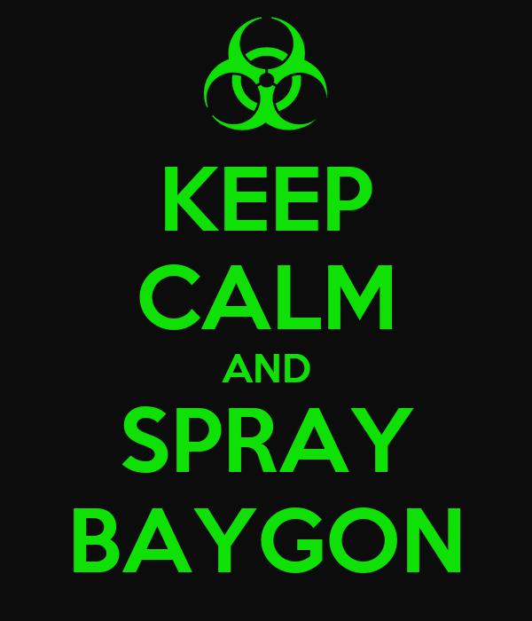 KEEP CALM AND SPRAY BAYGON
