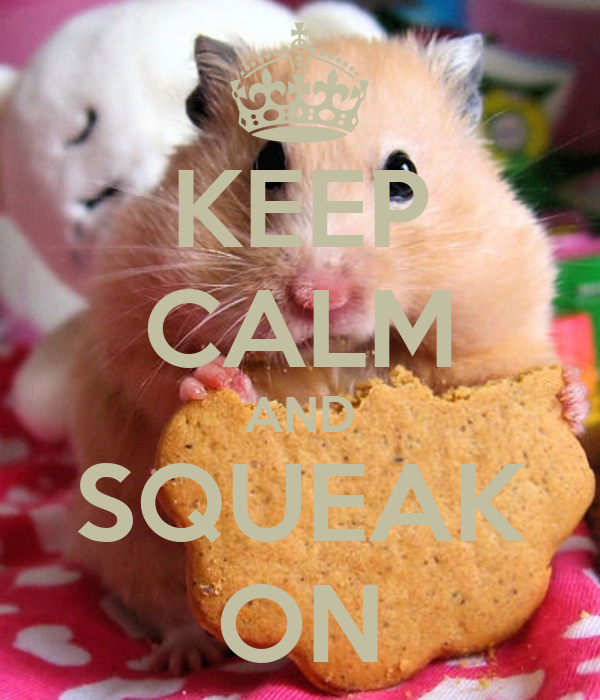 KEEP CALM AND SQUEAK ON