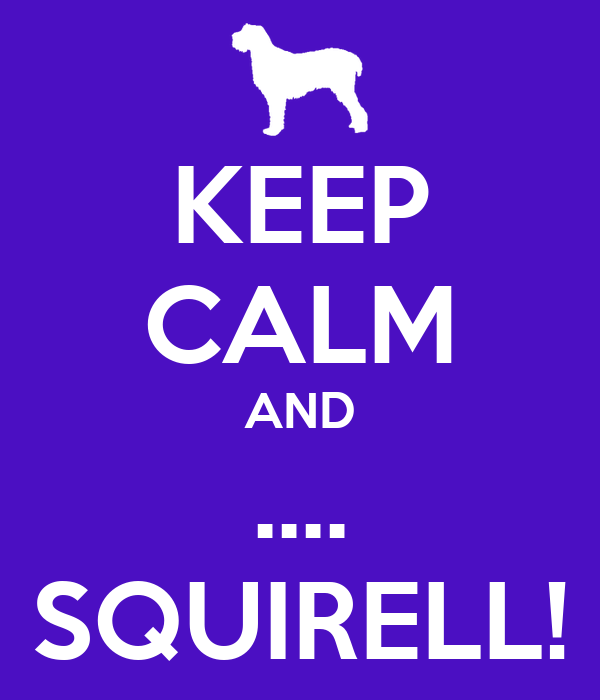 KEEP CALM AND .... SQUIRELL!