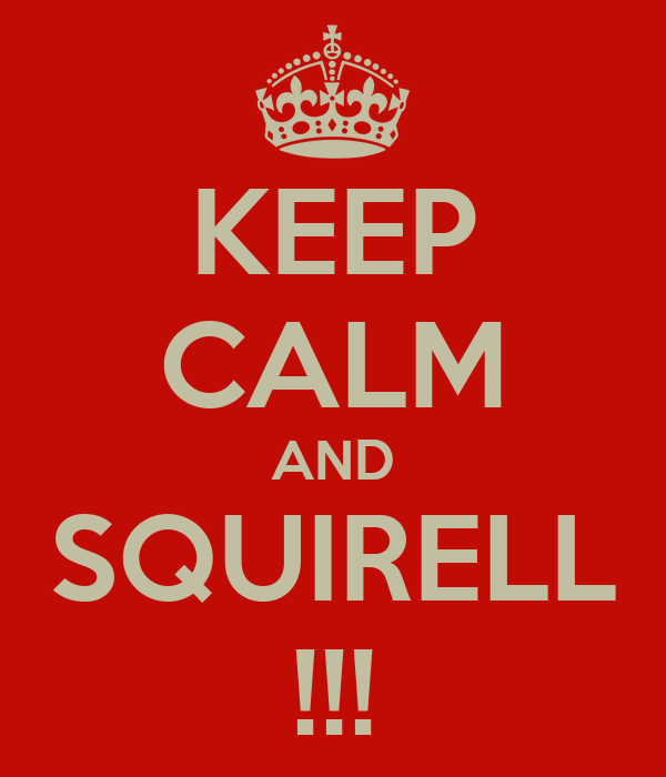KEEP CALM AND SQUIRELL !!!