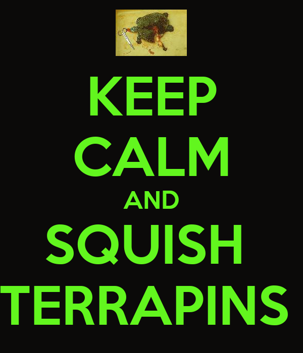KEEP CALM AND SQUISH  TERRAPINS