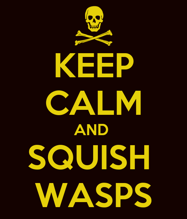 KEEP CALM AND  SQUISH  WASPS