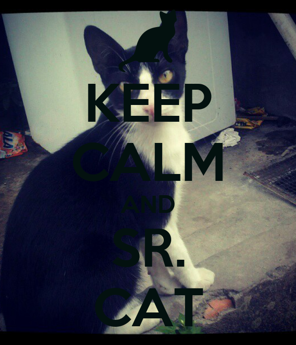 KEEP CALM AND SR. CAT