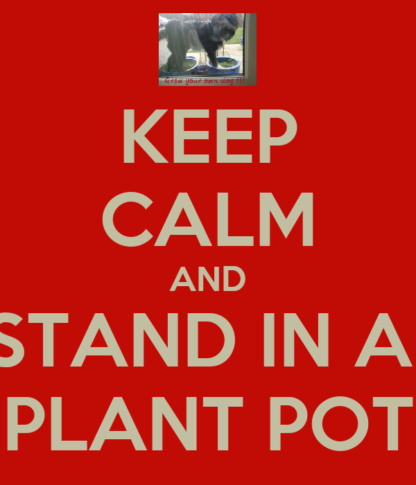 KEEP CALM AND STAND IN A  PLANT POT